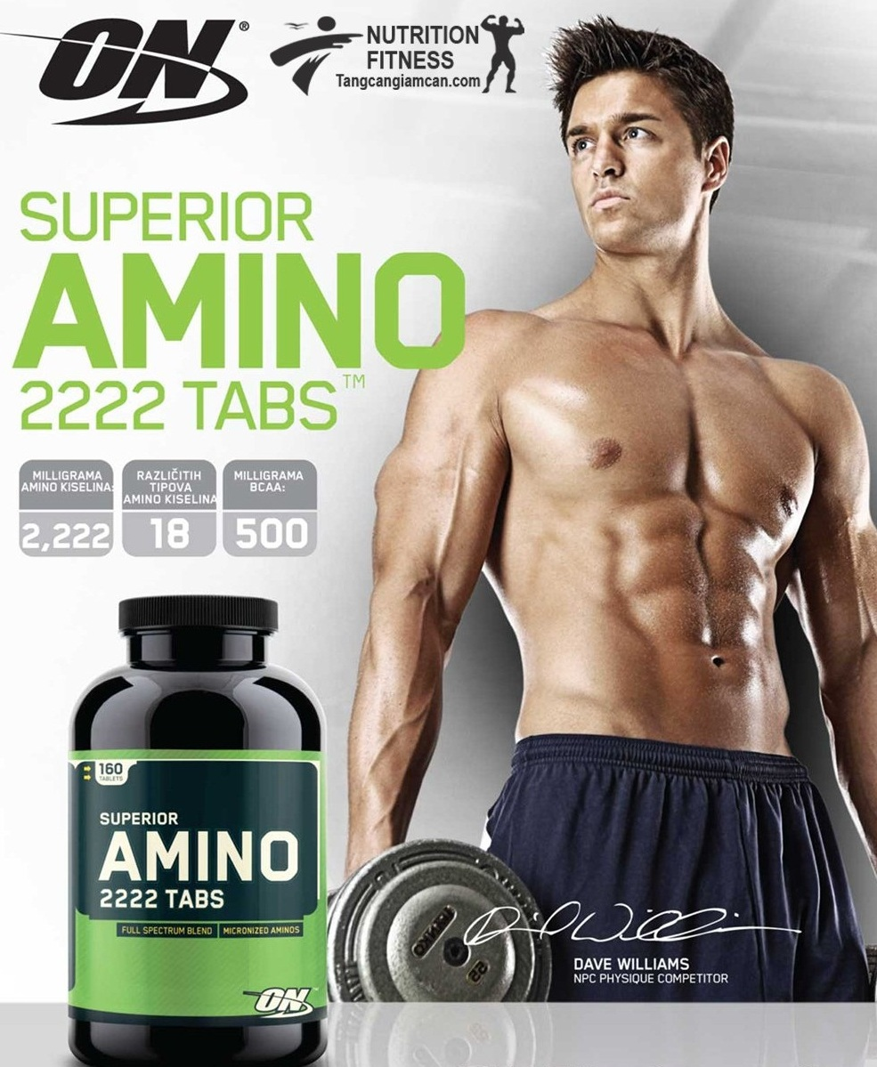 Tác dụng của Amino đối với người đang tập thể hình tăng cơ bắp như thế nào
