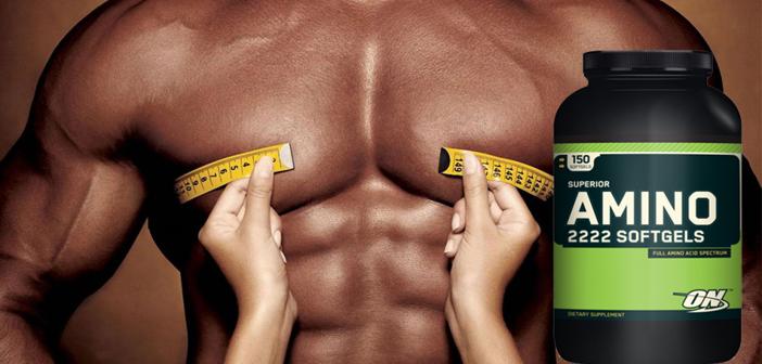 Tác dụng của Amino đối với người đang tập thể hình tăng cơ bắp như thế nào 2