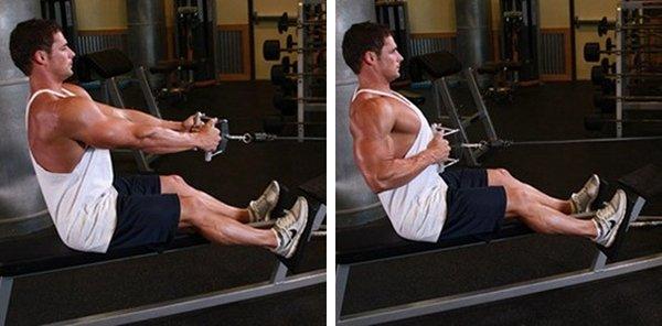 Bài tập cơ lưng và cơ xô