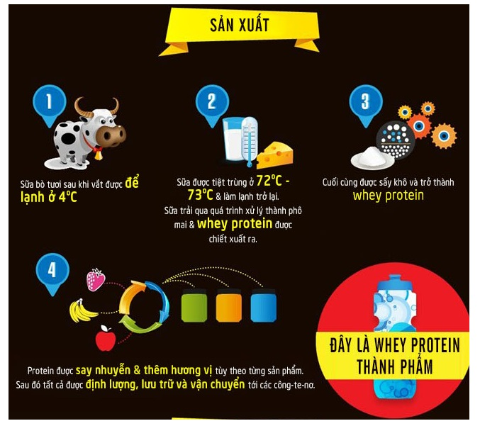 Tác dụng của whey protein với người đang tập thể hình, muốn tăng cơ bắp là gì 2