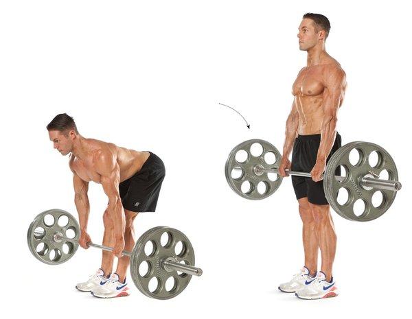 Tập cử tạ mạnh là bài tập cơ đùi phát triển hiệu quả